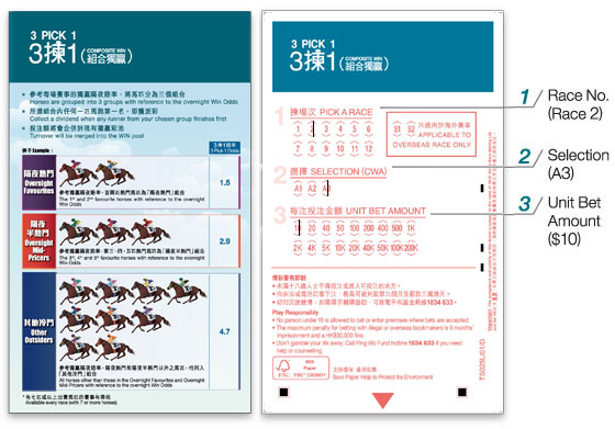 3 Pick 1 - Ticket Filling - How to Bet - Composite Win - The